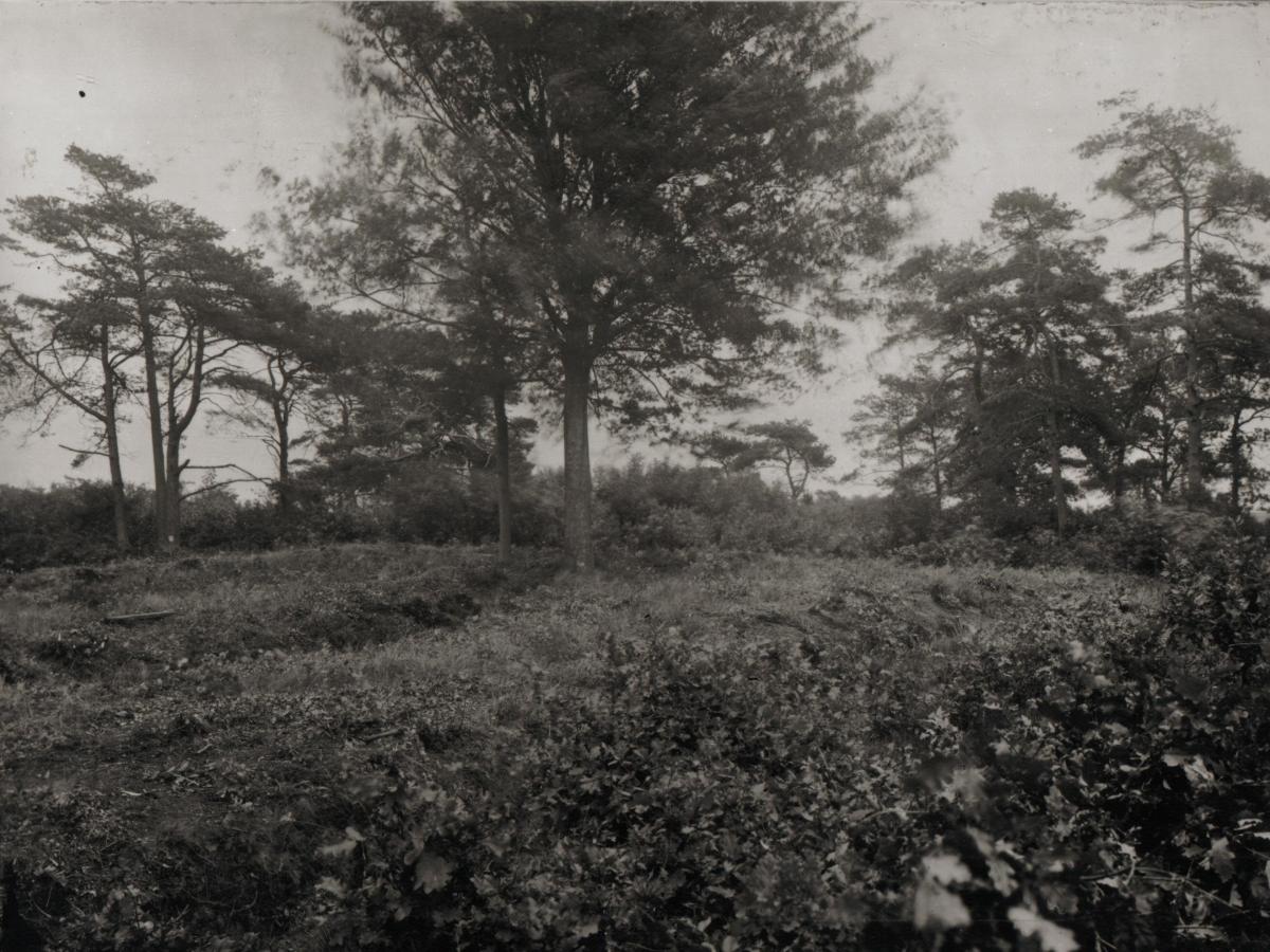 MK Terrein grafheuvel na de afgraving 1922